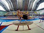 pommel hourse was most difficul apparatus for me