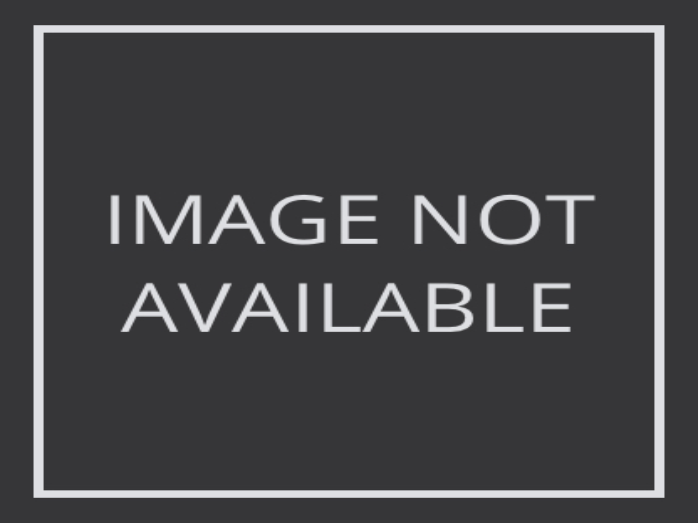 Alessandra Braga