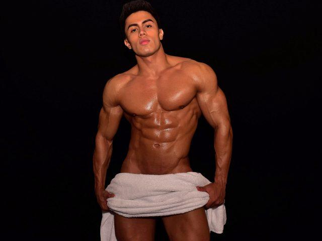 Terceo Muscle