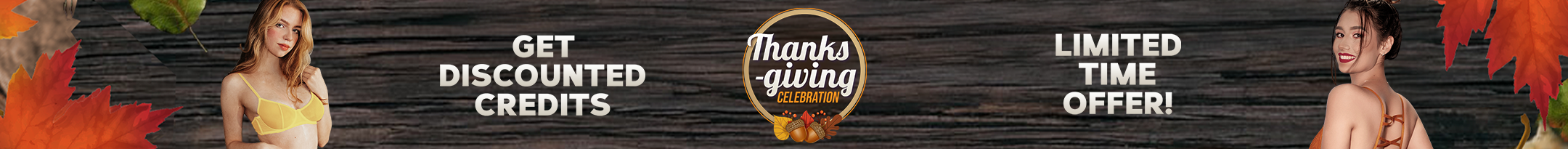 Thanksgiving Discount Promo